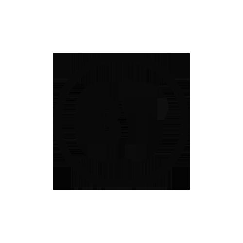 BT Logo - Pretzel Films