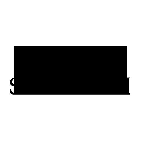 Swarovski logo - Pretzel Films